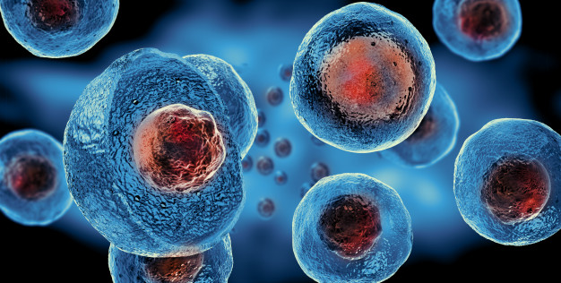 embryonic-stem-cells-cellular-therapy_151689-32.jpg